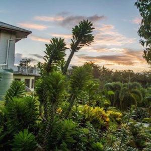 Lucious Garden View